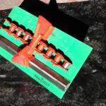 'V' Rail Guided Auto-Rotation Chain